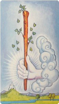 Ace of Wands Tarot Card Meanings tarot card meaning