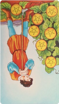 Seven of Pentacles Tarot Card Meanings tarot card meaning