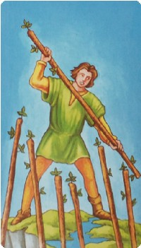 Seven of Wands Tarot Card Meanings tarot card meaning