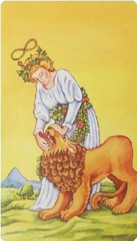 Strength Tarot Card Meanings tarot card meaning