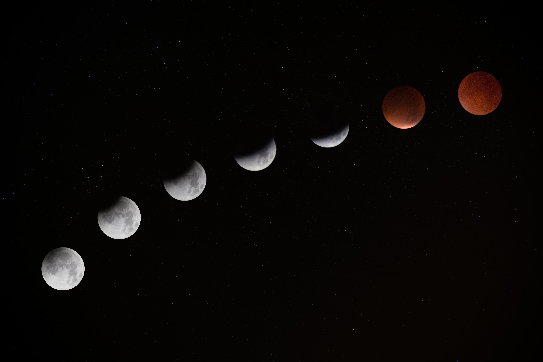 New Moon Manifestation Tarot Spread
