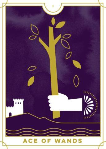 everday tarot ace of wands